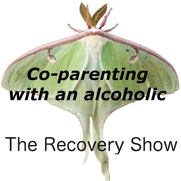 Co-parenting with an Alcoholic – 342