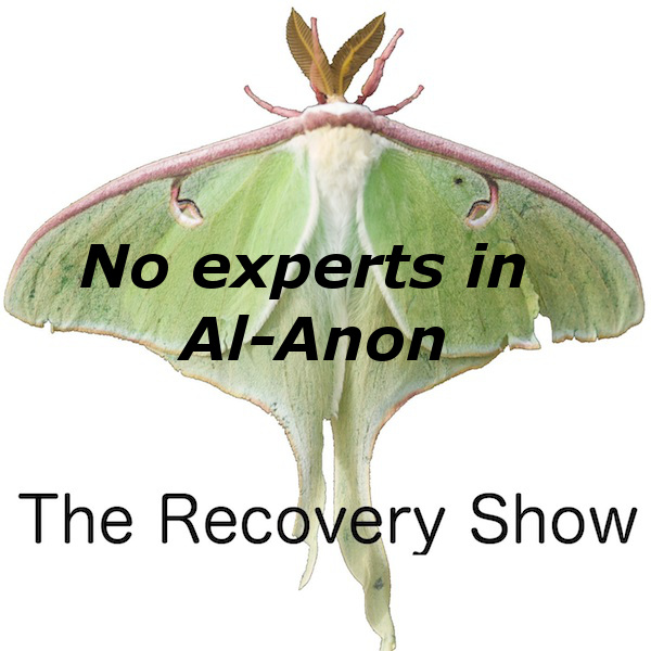 There are no experts in Al-Anon — 343