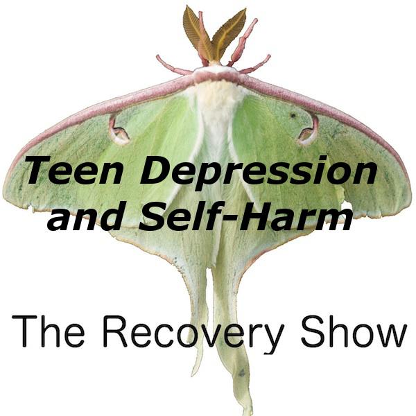 Teen Depression and Self-harm – 348