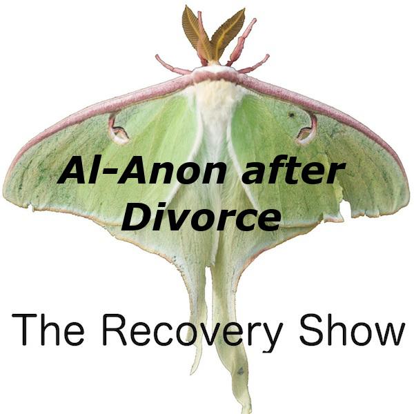 Al-Anon after Divorce – 358