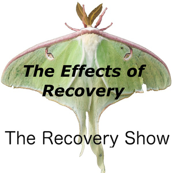 The Effects of Recovery – 359